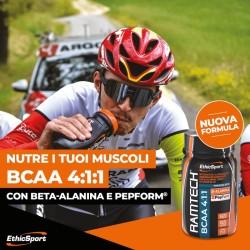 Fencing Kit 350n Foil full alfafencing 07